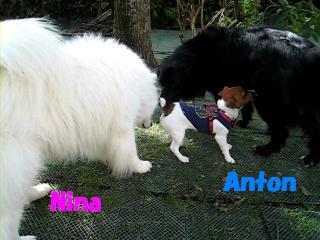 アントン君とニイナちゃん