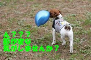 #2 ボール4