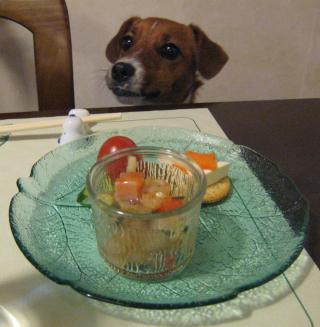 晩御飯の前菜とピート