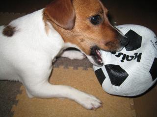 サッカーボール破壊2