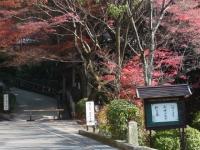1312-kyoto10.jpg