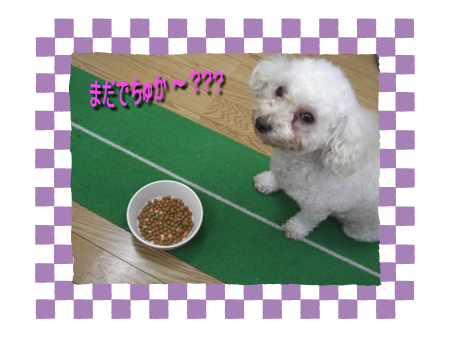 CIMG4591_01sc.png