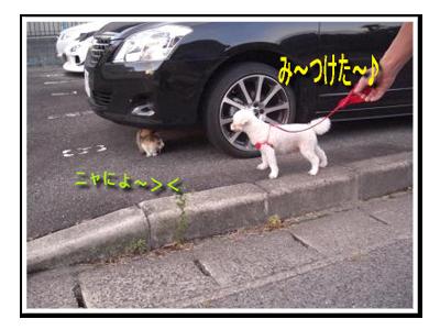 CIMG4814_sc.png