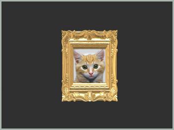 cat01_sc.jpg