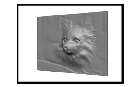 chihuahua-base2_sc.png