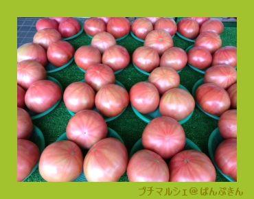 平取のトマト