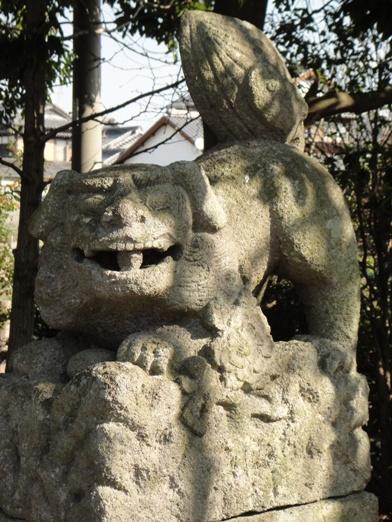 三島神社三八松539⑤