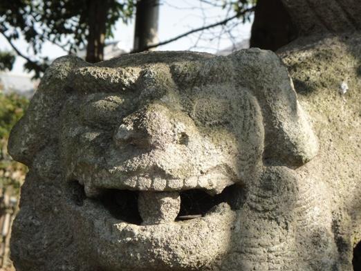 三島神社三八松539⑥
