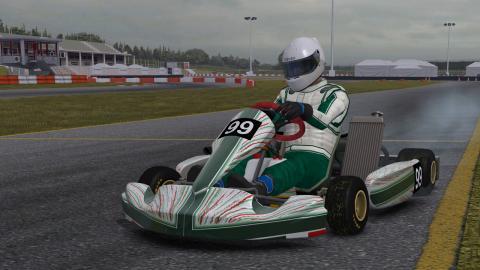 kart-racing_20101229111448.jpg