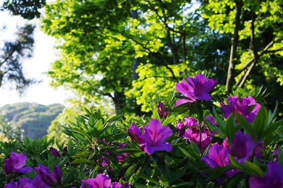 kk46_20120510193613.jpg