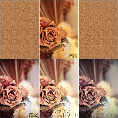 20100918photo01.jpg