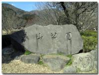 幕山公園-1-