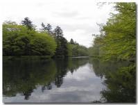 雲場池-2-