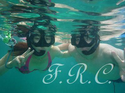 ピピ島、カイ島観光ツアー手配はしまかぜ案内人まで