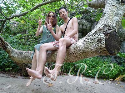 ピピ島、カイ島オプショナルツアー予約はしまかぜ案内人まで