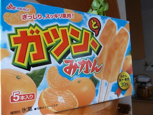 ぶろぐ2012 no.49