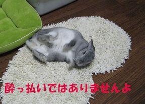 sa-ko 20120328 001