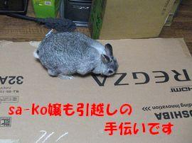 sa-ko 20120517 001
