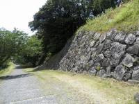 na.名護屋城東出丸から見る大手道