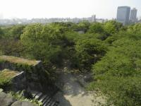 fu.福岡城天守台から見る鉄御門跡と本丸