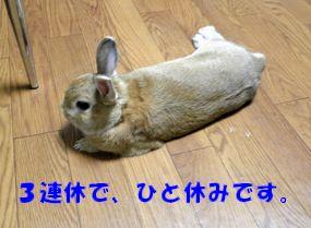 pig 20120914