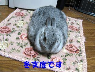 sa-ko 20120925