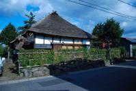 米沢武家屋敷・ウコギ 001