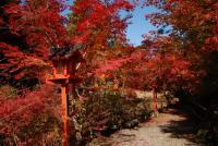 鍬山神社 001