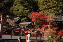 ku.鍬山神社 002