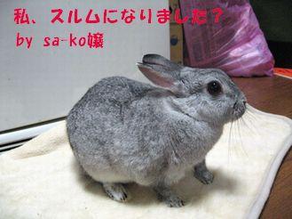 sa-ko 20121214 001
