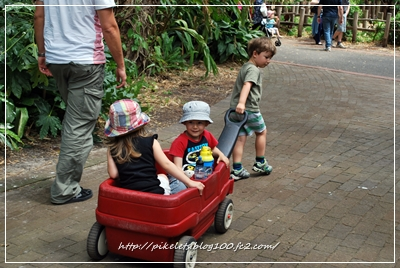 Kids on Cart