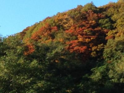 2014-10-15-24_convert_20141016224855.jpg