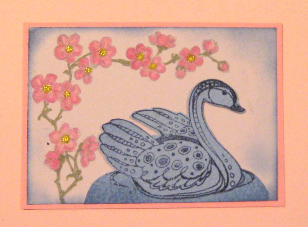 ATC [S] Swan