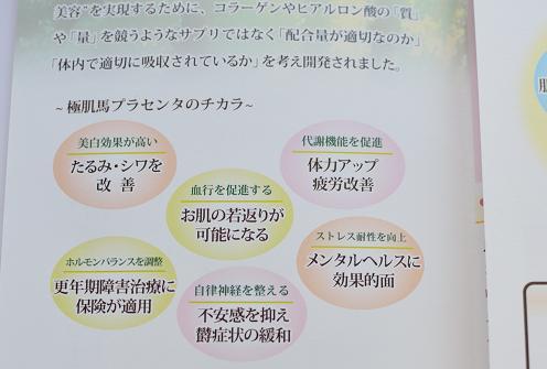 DSC_7675.jpg