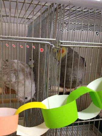 fc2blog_201210272208008dd.jpg