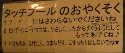 八島水族館タッチプールおやくそく