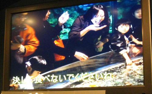 八島水族館食べないでね