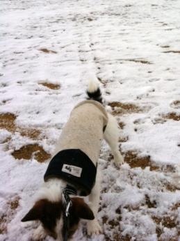 ちょっとの雪遊び