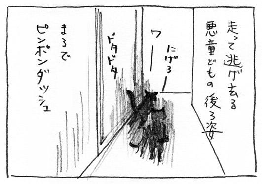 3_ピンポンダッシュ