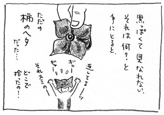 4_柿のヘタ