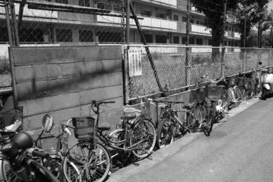 廃車と廃住宅