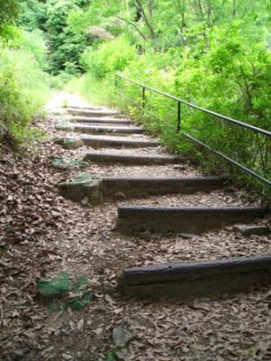 菊水登山道1