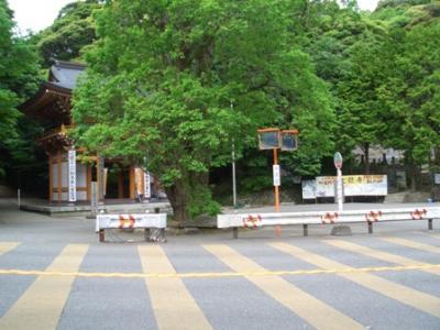 大龍寺バス停