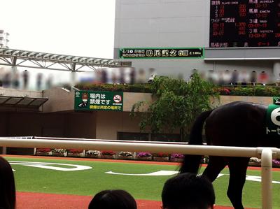 阪神競馬場にて02