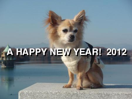 Happy+New+Year_convert_20111229222026.jpg