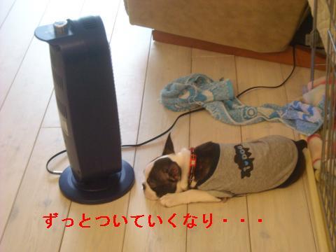 DSCN0983_convert_2010123014.jpg