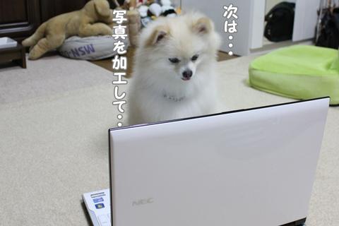 20120922-IMG_0661.jpg