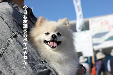 20121010-IMG_1358.jpg