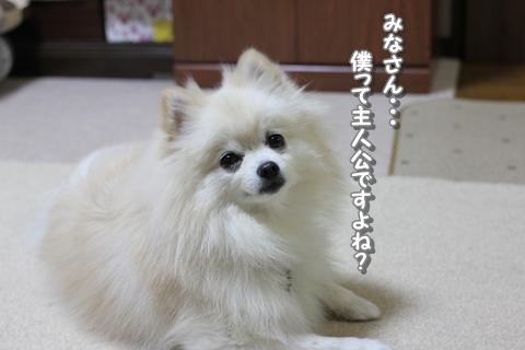 20121113-IMG_3830.jpg