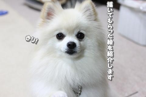 20121123-IMG_4210.jpg